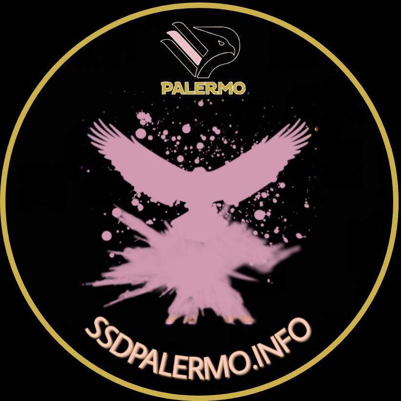 ssdpalermo.info